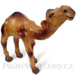 Velbloud - Dromedár Soška / Kůže 20cm
